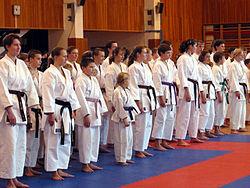 Imatge relacionada amb karate
