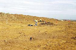 Imatge relacionada amb arqueòleg