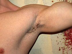 Imatge relacionada amb aixella