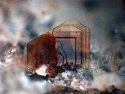 Imatge relacionada amb biotita