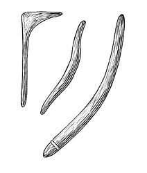 Imatge relacionada amb bumerang