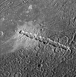 Imatge relacionada amb catena