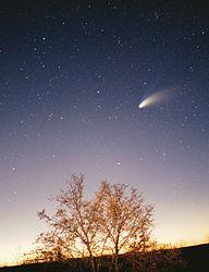 Imatge relacionada amb cometa