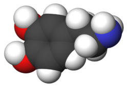 Imatge relacionada amb dopamina