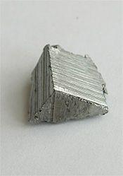 Imatge relacionada amb erbi