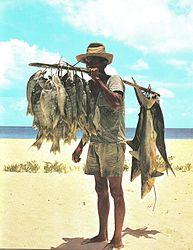 Imatge relacionada amb pescador