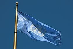 Imatge relacionada amb bandera