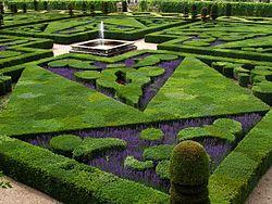 Imatge relacionada amb jardí