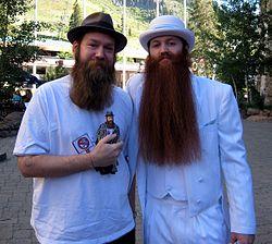 Imatge relacionada amb barba