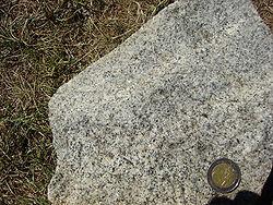 Imatge relacionada amb granodiorita