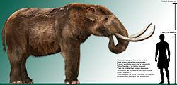 Imatge relacionada amb mastodont