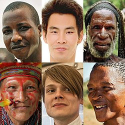 Imatge relacionada amb raça