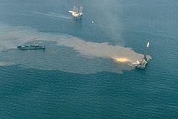 Imatge relacionada amb vessament de petroli