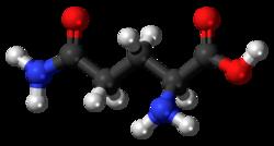 Imatge relacionada amb glutamina