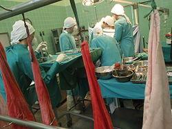 Imatge relacionada amb trasplantament