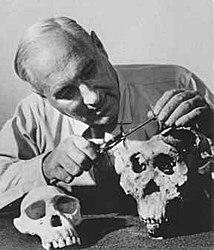 Imatge relacionada amb paleontòleg