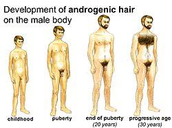 Imatge relacionada amb pubertat