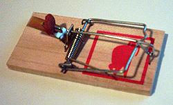 Imatge relacionada amb ratera