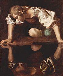 Imatge relacionada amb narcís