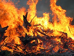Imatge relacionada amb foguera