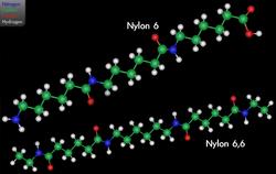 Imatge relacionada amb niló