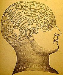 Imatge relacionada amb intuïció