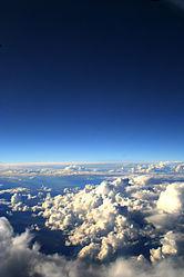 Imatge relacionada amb cel