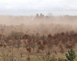 Imatge relacionada amb desertificació