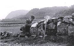 Imatge relacionada amb entomòleg