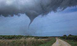 Imatge relacionada amb tornado