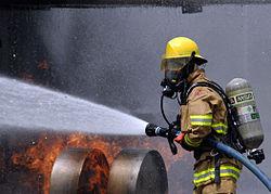 Imatge relacionada amb bomber