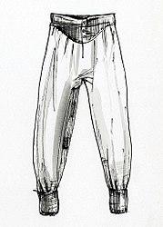 Imatge relacionada amb calçotets