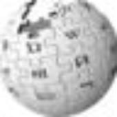 Viquipèdia: 50 idiomes, 1/2 milió d'articles