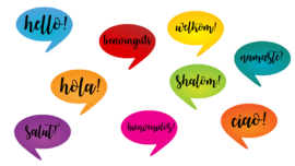 Noms de les llengües en català
